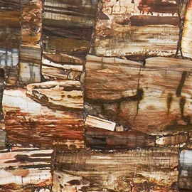 Кварцевый камень Caesarstone Concetto Petrified Wood Classic